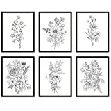 Black and White Flower Wall Art Prints Set of 6 UNFRAMED, Wildflower Botanical Floral Drawing, Bedroom Poster Living room Artwork, Farmhouse Aesthetic Decor (8x10)