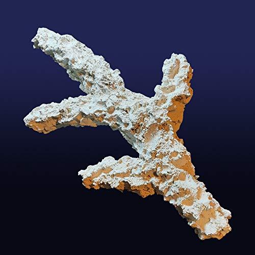 KORALLEN-AST Zweig Riffkeramik Meerwasser Aquarium Dekoration … (55 cm)