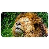 Bennigiry Alfombrilla de baño para bebés de 37,5 x 68,5 cm, antideslizante, con ventosas, agujeros de drenaje, león africano
