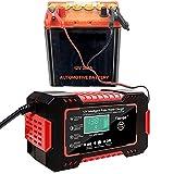 Riloer Desulfatador Mantenedor de Batería, Cargador de Batería Inteligente, 12 V 6 A, Baterías de Plomo Ácido, con Pantalla LED, Rojo