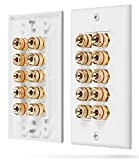 Fosmon [Five Speaker] Home Theater Wall Plate - Premium Quality Gold Plated Copper Banana ...