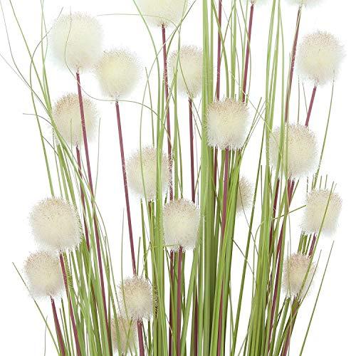 Flores Secas Decoracion Grandes flores secas  Marca Frank Flechtwaren