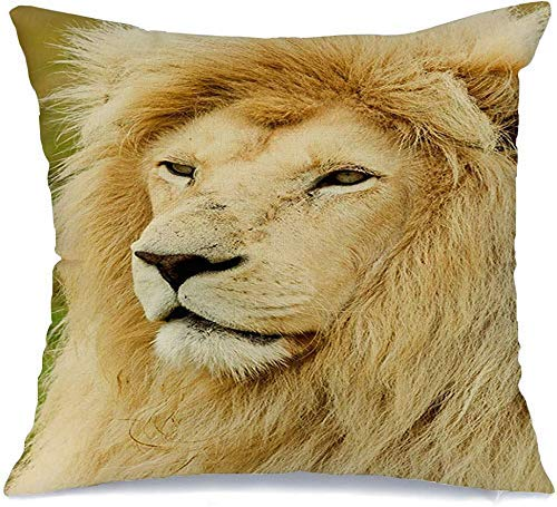 Funda de cojín África macho grande león blanco perfil animales vida silvestre parques exóticos africano impresionante gran carnívoro Funda de Cojine 45 X 45CM