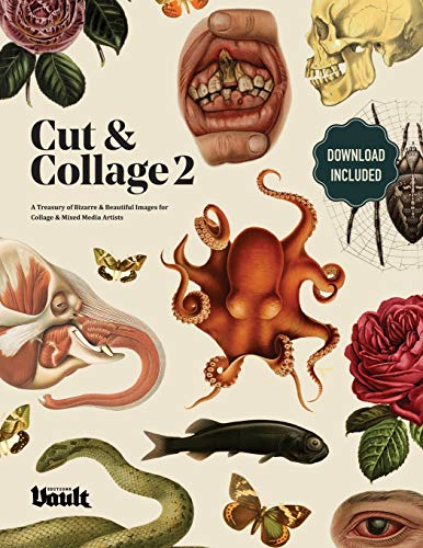 Cut and Collage: A Treasury of Bizarre and Beautiful Images Volume.2