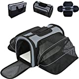 Smiling Paws Pets 4 Way Expandable Soft Sided Airline Approved Pet Carrier for Cats and Dogs | Folding for Easy Transport | for Air or Car Travel, Meets Most Under Seat Requirements | Large Size