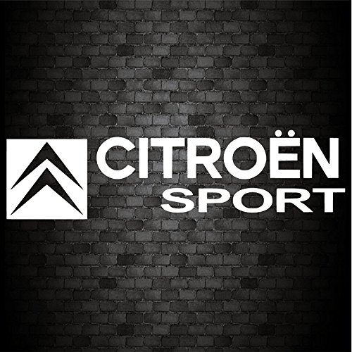 2 pegatinas de vinilo para coche Van Bike Caravana Ventana de Citroen Sport