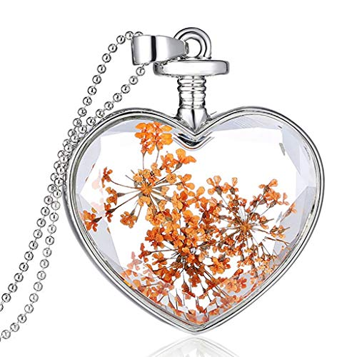 Yowablo Anhänger Halskette Trockenblume Herz Glas Wunschflasche Muttertag Schmuck (D)
