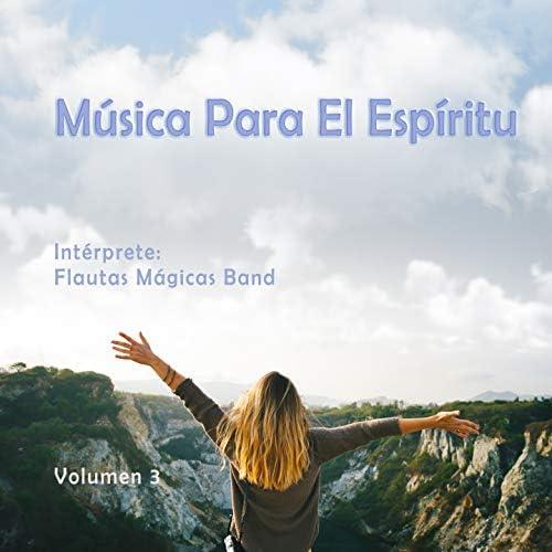 Flautas Magicas Band