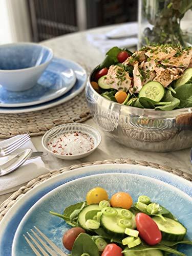 bzyoo BPA-Free Dishwasher Safe 100% Melamine Designed Plate Set Best for Indoor and Outdoor Party (12 PCS Dinnerware set… Salted Salad