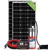 DCHOUSE Bomba solar de pozo profundo con kit de panel solar, bomba de agua de 12 V, 2 paneles solares monocristalinos de 100 W, controlador de 20 A, cable solar de 16,4 pies / 5 m