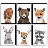 Frechdax® Kinder Poster Kinderzimmer Deko Bilder Waldtiere