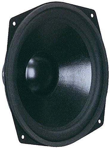 Visaton Lautsprecher 25,4cm (10 Zoll), 80W, 110W, untere Grenzfrequenz abhängig vom Gehäuse–6000Hz, 8Ω)