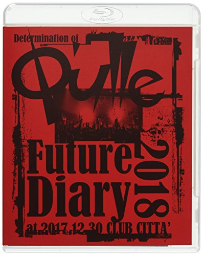 Determination of Q'ulle「Future Diary 2018」 at 2017.12.30 CLUB CITTA'(Blu-ray Disc)