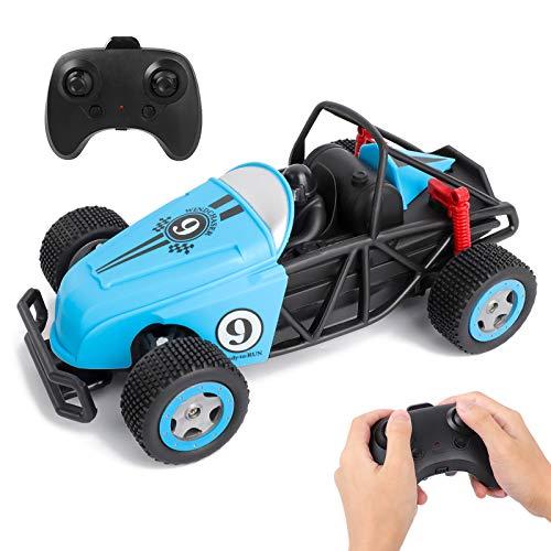 Rabing Auto Telecomandata, 2.4 GHz 15 KM/H Macchina Telecomandata per Bambini, 1:20 Multi-Terreno RC Auto RC Car Radiocomandata Giocattolo Regalo di Natale per Bambini, Blu (Auto Stunt RC)