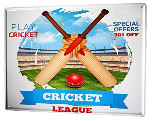 LEotiE SINCE 2004 Plaque en Métal Métallique Poster Mural tin Sign 40x30 cm Retro Déco Cricket