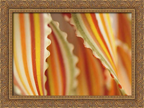 Terrill, Steve 24x17 Gold Ornate Framed Canvas Art Print Titled: USA Close-up of Dried Rainbow Pasta Noodles