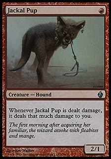 Best magic jackal deck Reviews