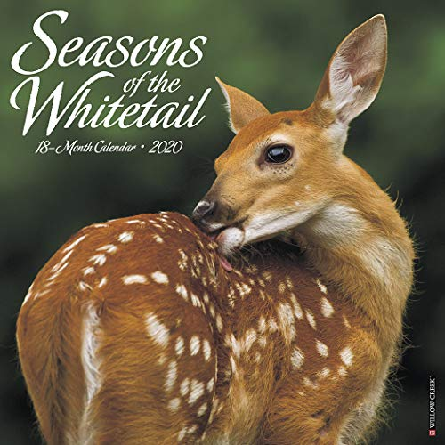 Seasons of the Whitetail 2020 Wall Calendar