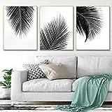 adgkitb canvas Tropische Pflanze Palme Blätter Schwarz