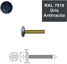 Vis autoperceuses 4,8x60 mm RAL 7016 gris anthracite t/ête frais/ée Torx par 100
