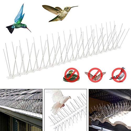 No Logo 10 stuks 50 cm roestvrij staal vogelafschrikking spikes milieuvriendelijk anti-pigeon vogelafschrikking gereedschap voor duiven uil kleine vogels hek wordt gebruikt om vogels in de open lucht te drijven