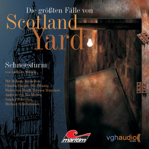 Schneesturm audiobook cover art