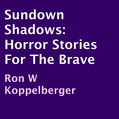 Sundown Shadows audiobook cover art