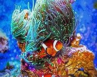 DIYデジタル絵画大人の絵画デジタルキット水中釣り40x50cmフレームレスキャンバス大人の初心者と子供に非常に適しています