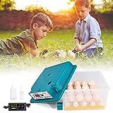 TELAM Incubadoras eléctricas de huevos 16 huevos, mini incubadora doméstica automática con aleta, de huevos giratoria automática para huevos de gallina, huevos de pato, huevos de paloma