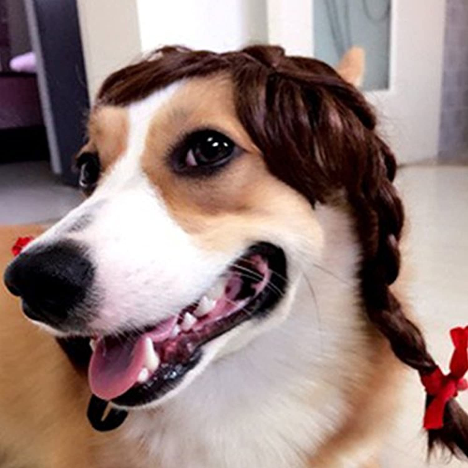 Dogs Wigs Hair Cosplay Accessories Funny for Pets Cats Wigs Halloween Supplies Interesting postiche cheveux Afro benodigdheden