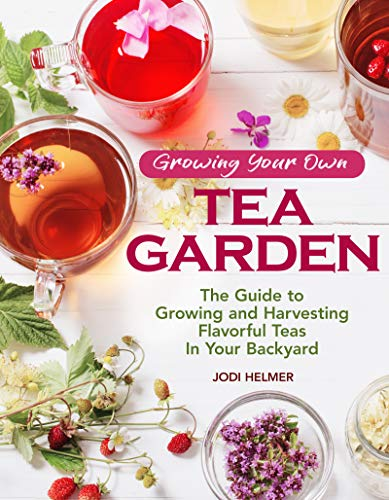 Growing Your Own Tea Garden: The Guide to Growing...