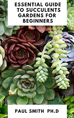ESSENTIAL GUIDE TO SUCCULENTS GARDENS FOR BEGINNERS (English Edition)