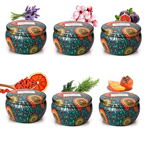 Scented Candles Gift Set Fragrance Essential Oils Aromatherapy Candle Soy Wax for Women Relaxation, 6.5OZ×6