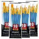 Acrylic Paint Brush Set, 4 Packs / 40 pcs Nylon Hair Brushes for All Purpose Oil Watercolor Painting Artist Professional Kits