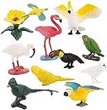 Juego de 10 figuras de pájaros realistas de plástico en miniatura, simulación de pájaros, loros, garzas, ciencia, juguete educativo