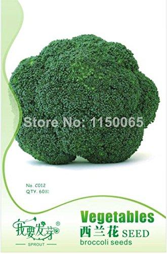 Hot vente 40pcs Broccoli semences, vert semences de légumes, Bonsai Plante en pot jardin Livraison gratuite