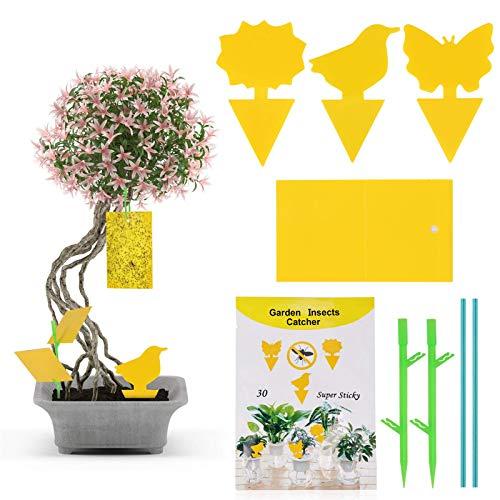 N-brand JOYUE 60 Stück Frucht Fliegenfalle, Gelbsticker Fliegenfallen, Doppelseitige Fliegenfänger Große Klebefläche, Gelbtafeln Leimfallen für Trauermücken, Blattläuse, Thripse und Weiße Fliegen
