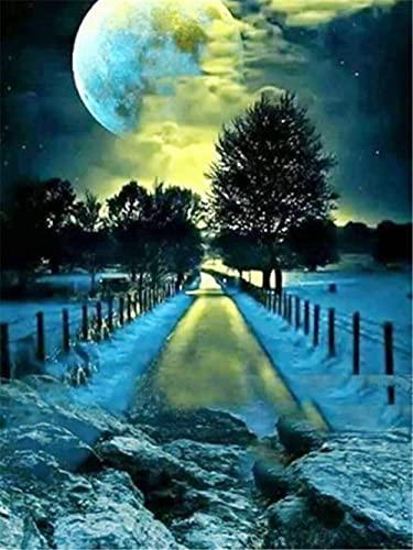 Kit de pintura de diamante 5D(Nieve en la carretera de noche),Crystal de punto de cruz bordado artes manualidades suministros para decoración de la pared del hogar_AB6413,Round_Drill_50x65cm