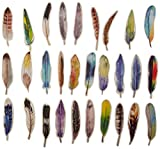 Feather Shaped Colorful Bookmarks, 30 PCS
