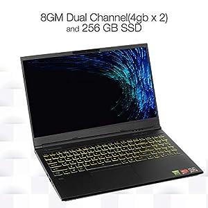 "Evoo Gaming 15.6"" Laptop, FHD, 60Hz, Intel Core i5-10300H Processor, NVIDIA GeForce GTX 1650, THX Spatial Audio, 256GB SSD, 8GB RAM, RGB Backlit Keyboard, HD Camera, Windows 10 Home, Black, EG-LP10-BK"