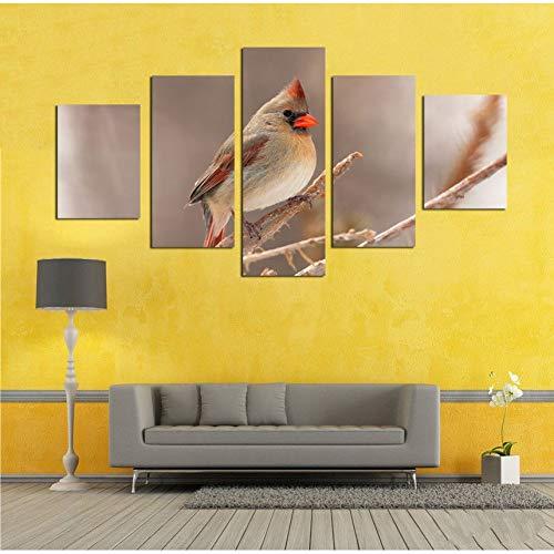 GHTAWXJ Canvas Foto's Modulaire Muur Kunst 5 Stuks Dier Kleine Vogel Met Rode snavel Schilderij Woonkamer Hd Prints Poster Decor