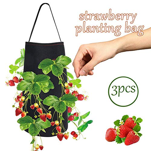 XBR Strawberry Planting Grow Bags, Hanging Design Respirant Soft Non-Woven 8 Pockets Planting Pouch with Handles, for Strawberry, 3 Pcs, Flower Pots