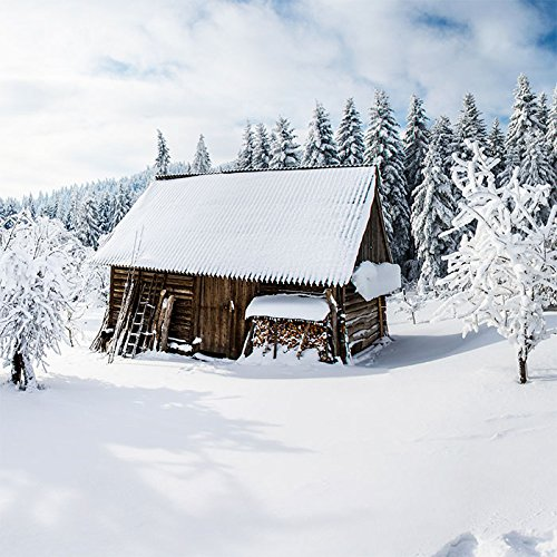 20 Servietten Holzhütte im Winterwald / Wald / Schnee / Winter / Weihnachten 33x33cm
