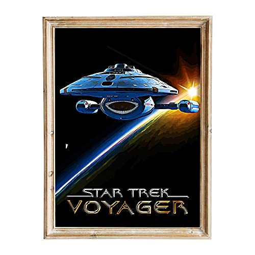FANART369 Star Trek Voyager Poster A3 Größe TV Serie Poster Original Fanart Kunstwerk Wand Kunstdruck Dekor 29,7 x 42 cm randlos