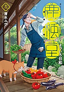 鹿楓堂よついろ日和 13巻: バンチコミックス