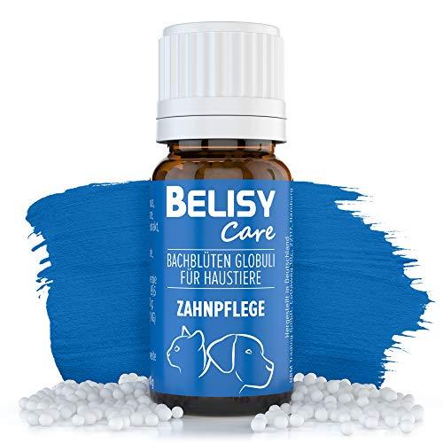 BELISY Zahnpflege Bachblüten Globuli für Hunde & Katzen - Perfekt für Zähne & Zahnstein - Spezial Bachblütenmischung mit Thymian & Pfefferminze - alkoholfrei - 10 g