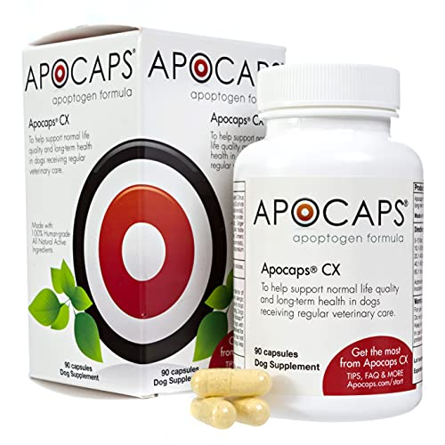 Top 10 best selling list for supplements for dog with cancer