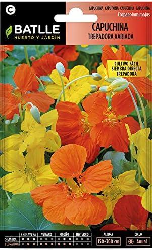 Semillas de Flores - Capuchina Trepadora variada - Batlle