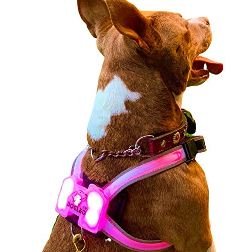 DOGLED K9 LED Dog Vest Waterproof USB Bright Rugged Harness, Multi-Color, Flashing and Still Modes, Rechargeable and Easily Cleaned (Large)