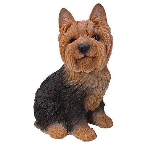 Vivid Arts - Real Life Sitting Yorkshire Terrier Home or Garden Decoration (XRL-YKTS-B)